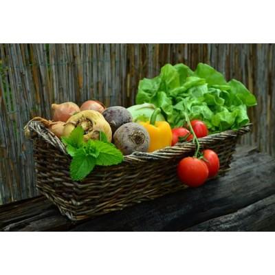Pré-vente de semences des Jardins de l'Écoumène